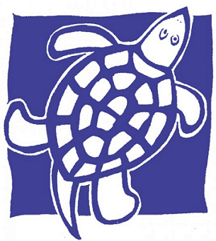 blue turtle toys