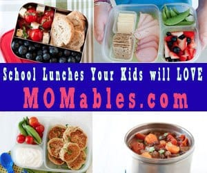 Momables School Lunch Ideas