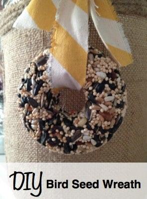 Homemade Bird Seed Wreath