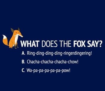 Funny TShirt What Does The Fox Say