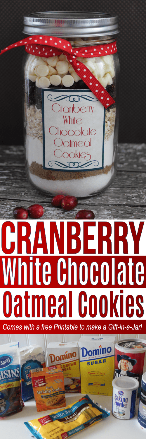 Cranberry White Chocolate Oatmeal Cookie mix in a jar. Simple gift and great dessert!