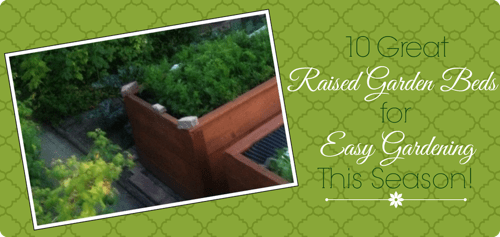 Raised Garden Beds for Easy Gardening