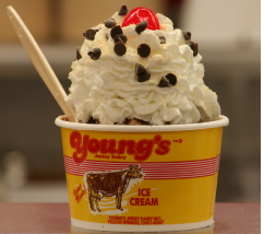 Young's jersey dairy coupons