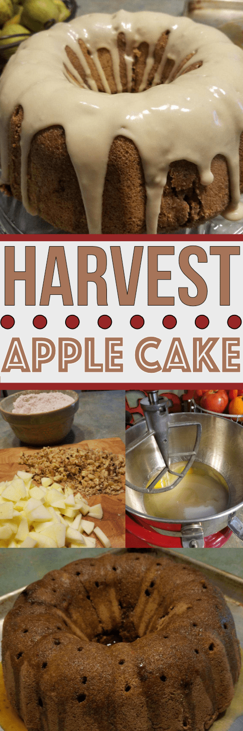 This Harvest Apple Cake is a family recipe handed down through generations. It is THE BEST Apple Cake recipe you will try!!