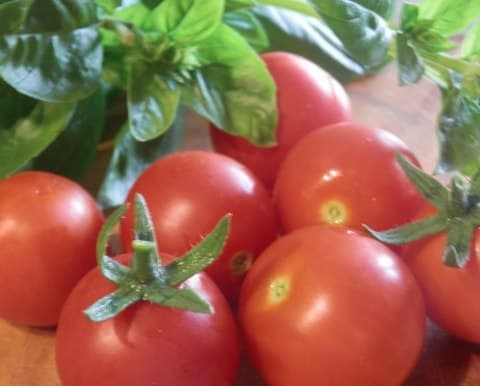 Carrabba_s Tomatoes Caprese Ingredients