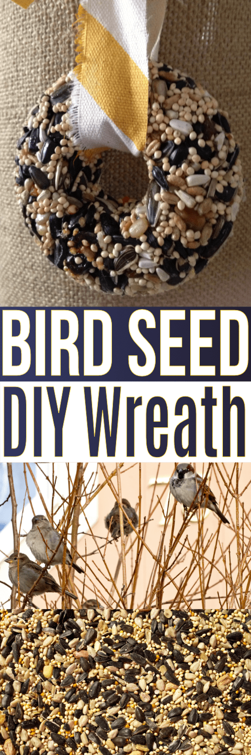 This bird seed wreath recipe is made with gelatin and super easy to DIY! Use this recipe to make a wreath or homemade bird seed ornaments.