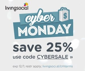 Living Social Cyber Monday Sale Promo