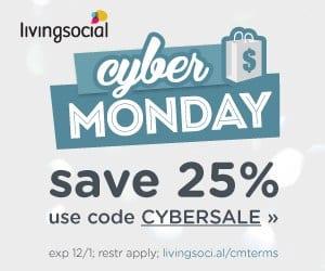 Living Social Cyber Monday Sale Promo