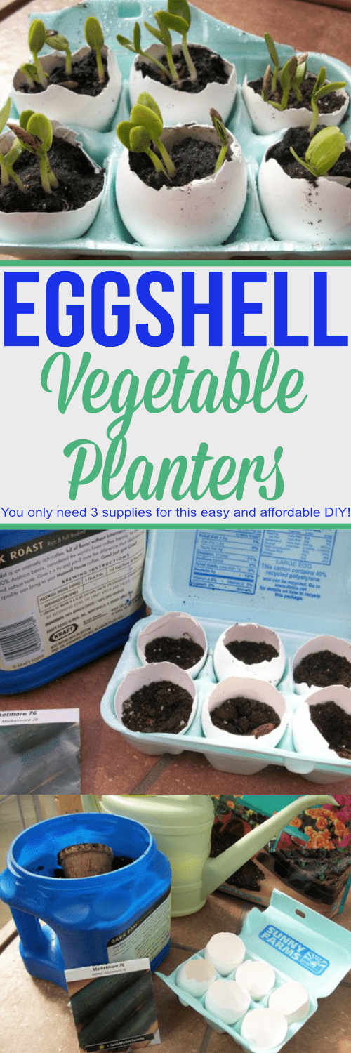 You only need 3 supplies for these easy and affordable eggshell vegetable seed starters!