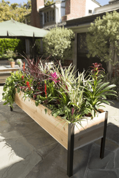 Elevated Cedar Planter Box
