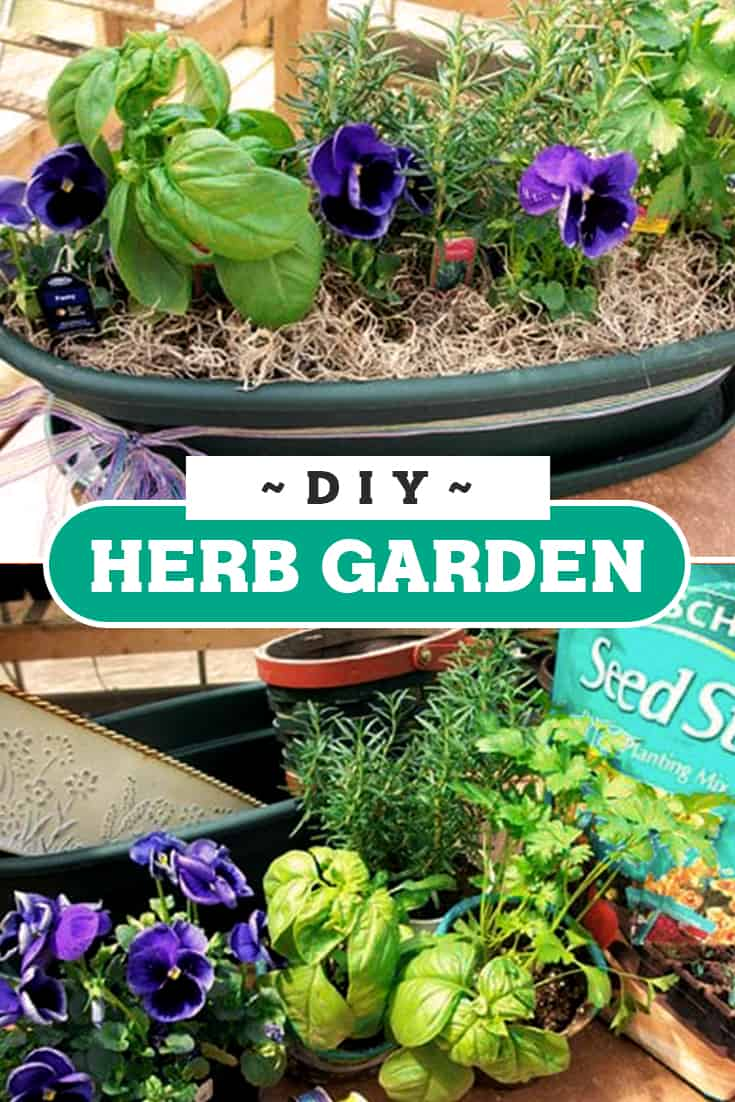 DIY these herb garden containers to liven up and organize your garden! via @AndreaDeckard