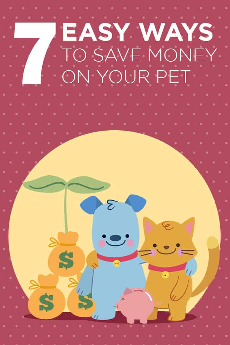 7 easy ways to save money on your pets. Personal tips from a new-ish dog mom, including how to to make dog food, saving on grooming expenses, finding the most affordable and experienced veterinarian, and more!