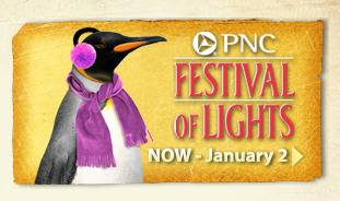 Pnc Festival Of Lights 1 2 Price Admission